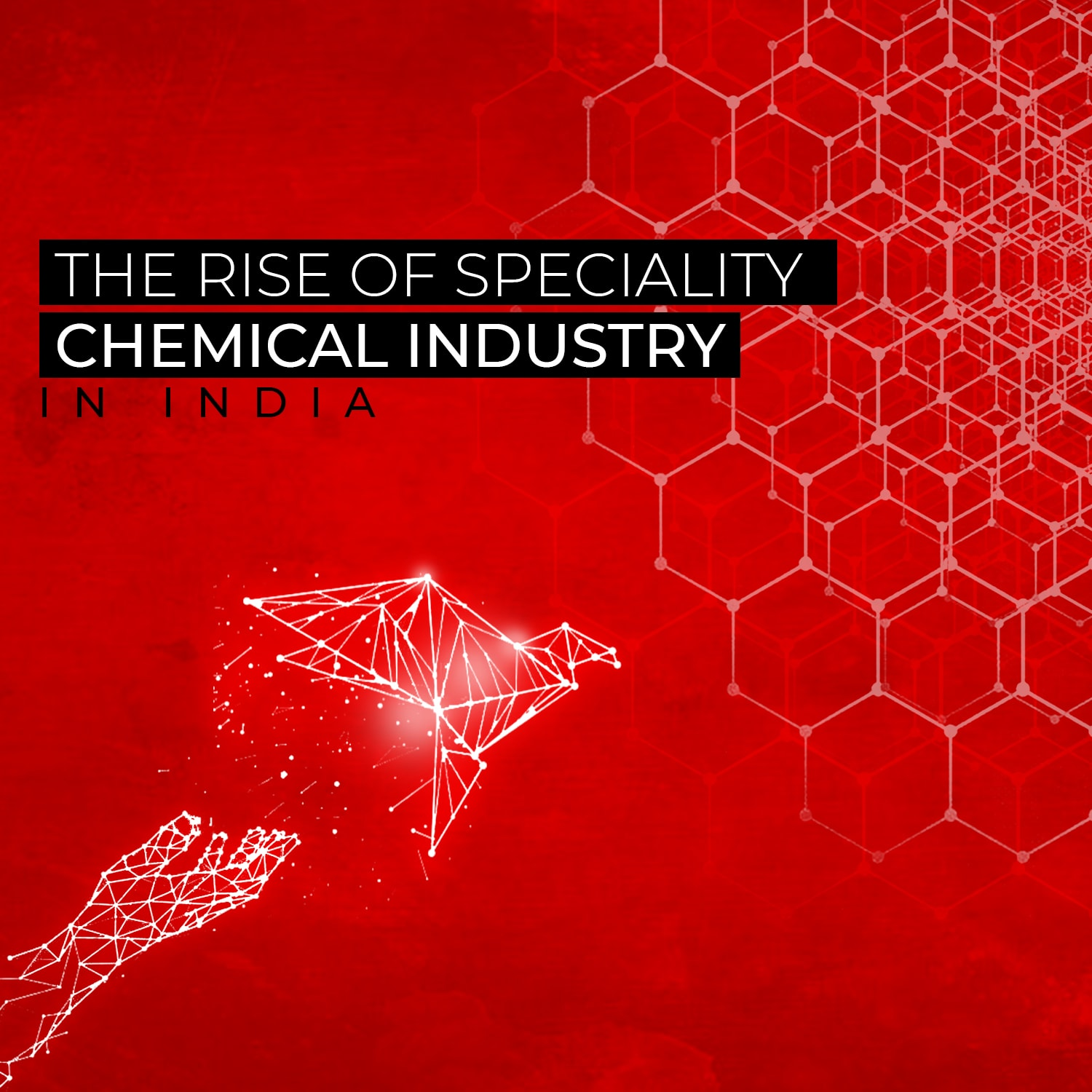 The extraordinary story of the Speciality Chemical Industry told through a series of animated visual infographics